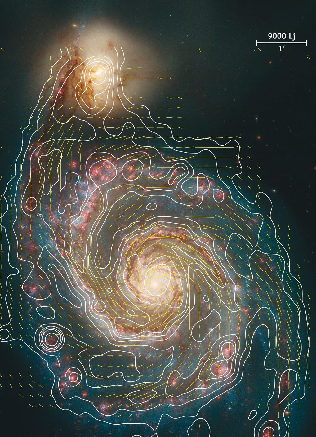 Magnetic field lines in M51 and contours of total emission at 6 cm (VLA+Effelsberg)