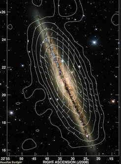 Magnetic field lines of the edge-on galaxy NGC891 and contours of the total radio emission at 3.6cm observed with the 100-m telescope in Effelsberg. The radio map is overlayed on an optical image of NG891 taken with the Canada-France-Hawaii Telescope.